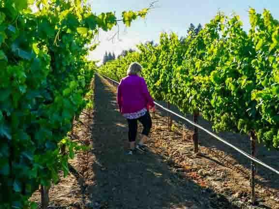 acquiesce winery