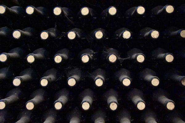 Dear New Wine Drinker